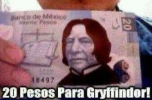 20 pesos for gryffindor