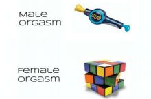 The difference between Male and Female