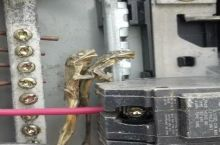 Sometimes bugs and things get into electrical panels. We didn't expect to see this though...