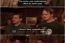 Dwight found twins