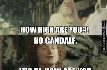 He has grown too fond of Hobbit weed