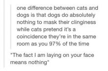 The truth about cats.
