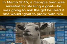 How to ask a girl to prom: Get a goat...