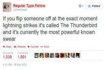 Thunder thunder thunder biiiiird