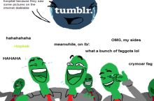 How most of us remember the 4chan-tumblr war