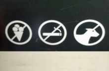 No ice cream. No cigarettes. Yes unicorns.