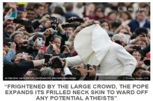 The Pope: Unearthed